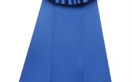 Blue Ribbon for Best Medicare Advantage Plan