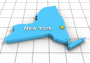 New York State Outline with Capital