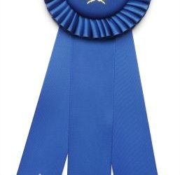 Blue Ribbon - First place